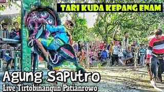 Kuda Kepang Enam Sigrak Rancak Jaranan Agung Saputro Live Tirtobinangun Patianrowo--JOOSS !!!