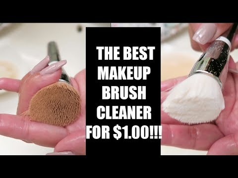 The BEST Makeup Brush Cleaner for $1?!?!?