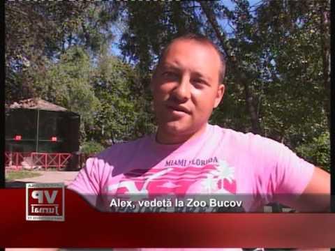 Alex, vedetă la Zoo Bucov