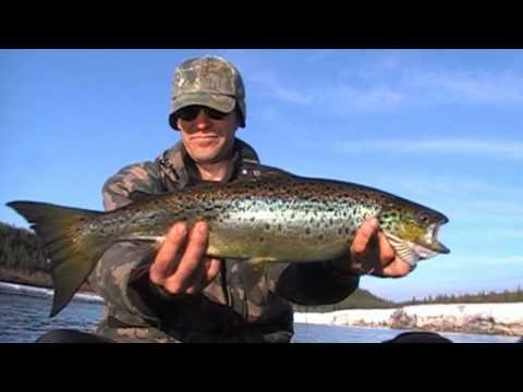 La pêche en eau douce sur la Côte-Nord