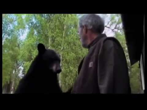 Dude slaps a bear