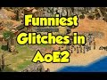 Funniest Glitches in Age of Empires 2