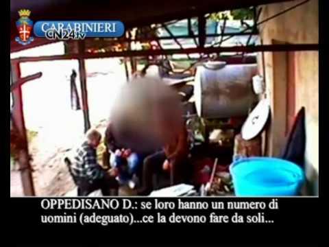 Operazione Il Crimine, in manette la cupola della 'ndrangheta