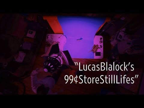 Lucas Blalock's 99¢ Store Still Lifes