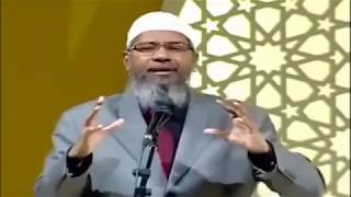 Video Ex-Muslim Atheist making stupid Zakir Naik angry on evolution MP3, 3GP, MP4, WEBM, AVI, FLV Oktober 2017