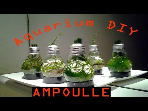 Aquarium en forme d'ampoule DIY