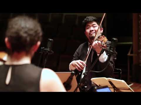 See video Johannes Brahms - String Quartet No. 2 in A minor Op. 51 No. 2 3rd Movement
