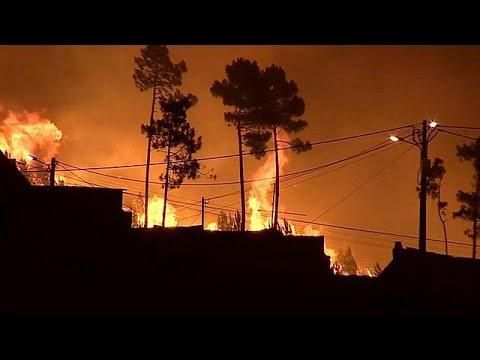 Πορτογαλία: Προσφυγή παιδιών στο ΕΔΑΔ μέσω ΜΚΟ για τις πυρκαγιές