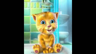 Talking Ginger hymne guru