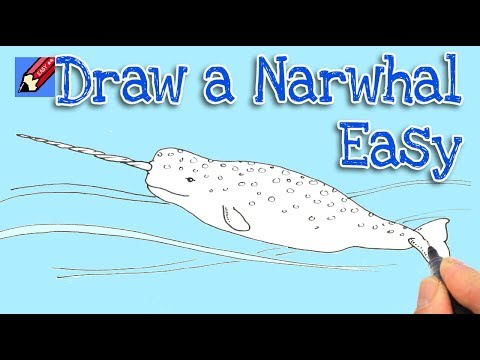 how to draw a narwhal real easy shoo rayner author