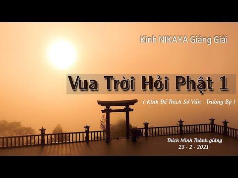 Kinh NIKAYA Giảng Giải - Vua Trời Hỏi Phật 1 _ Kinh Đế Thích Sở Vấn _ Trường Bộ