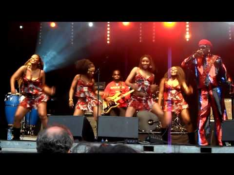 Dr_ Sakis @ The hague african festival 2010 part 3