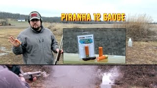 """In this video, we're taking a look at the 12 Gauge Piranha Ammo. I've tested this stuff in the past and I'll say that its pretty much useless. What do you think? ** You can now support I'm with Chaos by visiting http://Patreon.com/ImwithChaos **-------------------------------------------------------------------------------------Check out ImwithChaos.com for more reviews and videos!I'm with Chaos is all about bringing you the most unbiased gun and gear reviews possible. I am a gun geek to the core and I love everything from machine guns to hunting shotguns to ammunition to accessories. Sharing as much knowledge as I can is the primary objective. If you aren't having fun while shooting, you aren't doing it right! Prepare to sit back and enjoy the show. ----------------------------------------------------------------------------------------Please Like, Share and Subscribe to get updates and see videos as soon as they come out! You can also find me on:Facebook.com/Chaos311ClarityInstagram: @Chaos311ClarityTwitter: @Chaos311ClarityMusic: """"Noise Attack"""" Kevin MacLeod (incompetech.com)Licensed under Creative Commons: By Attribution 3.0http://creativecommons.org/licenses/by/3.0/"""