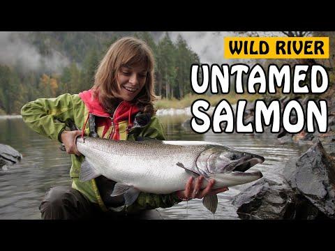 Wild River, Untamed Coho | Fishing with Rod_Horgászat videók