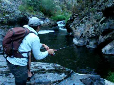 pesca cucharilla leon