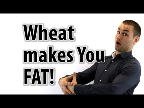 wheat - Wheat Belly: Lose the wheat lose the weight Subscribe Now! http://www.AmeerRosic.com #1 SOURCE for nutrition, fitness. wellness and living an OPTIMAL LIFE! D...
