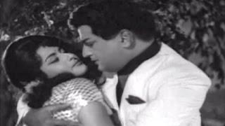 Bhale Mastaru Telugu Movie Songs || Neevu Nenai || NTR || Kanchana ||  Krishnam Raju