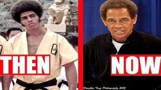 Enter The Dragon 1973 Cast  Then And Now
