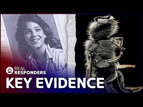 Forensic Entomology: Using Insects To Track Killers | The New Detectives | Real Responders
