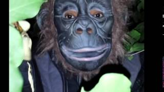Finding Munky Man : A Journey Into the Jungle Land