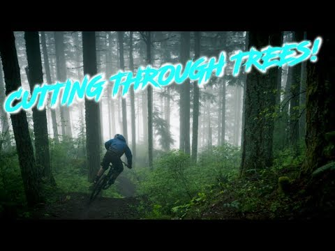 I LOVE THE PNW!! - Trail 140