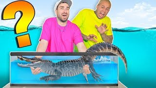 Whats in the Box Challenge !!  (UNDERWATER SEA FISH ANIMALS)