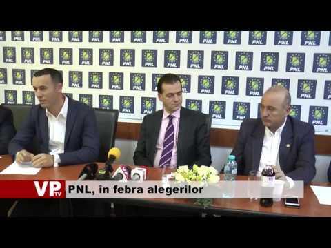 PNL, în febra alegerilor