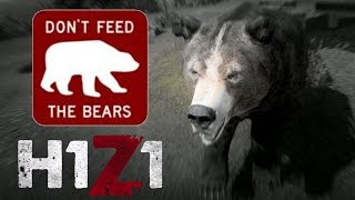H1Z1 | DON'T Feed the Bears!