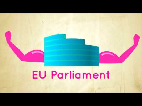 European Parliament - The EU-Parliament and its function within the European Union, explained as easy as possible under consideration of the changes caused by the Treaty of Lisbon...