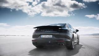 PASM with Air Suspension and Leveling System - Panamera