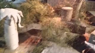 FA7036 - Animation/Architecture - On the Set