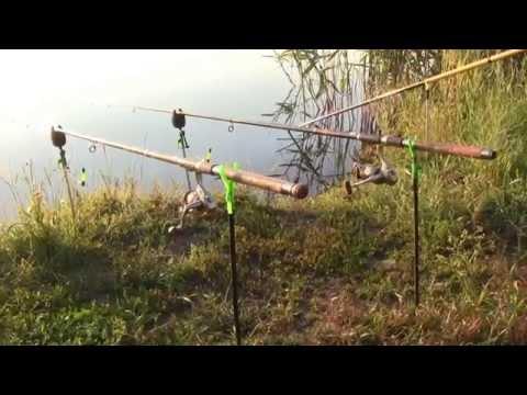 рыбалка на кормак на карася