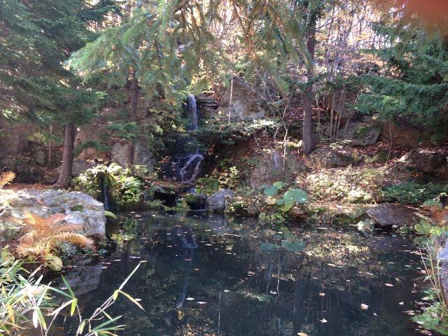 Relajante caída de agua