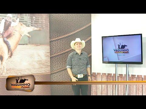 Waguinho Animal 18/06/16 na íntegra | Rodeio em Auriflama