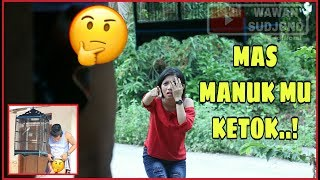 Video MAS MANUKMU KETOK...!! (ngakak ngasi ngompol yo elah) - komedi pendek jawa #SWS MP3, 3GP, MP4, WEBM, AVI, FLV Juni 2019
