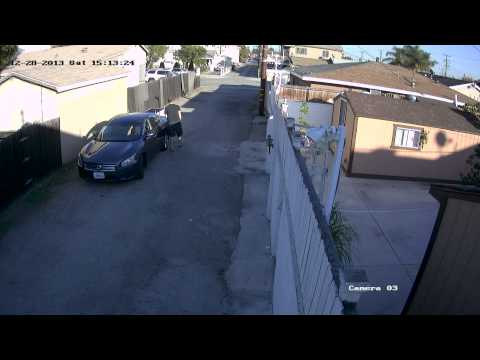 Man allegedly runs over a chihuahua in Hawthorne