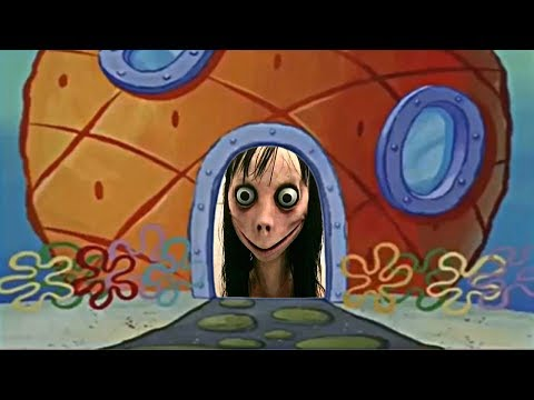 Who Lives In A Pineapple Under The Sea? MOMO