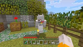Minecraft Xbox - The Big Dog [97]