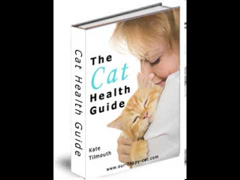 The Cat Health Guide Review + Bonus