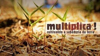 Multiplica! (Isabella Cunha) - Videoclipe da música