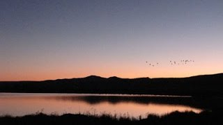 Monte Vista (CO) United States  city photo : USGS UAS Night Flights at Monte Vista National Wildlife Refuge CO