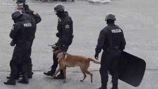 Predstavitev Slovenske policije na sejmu SOBRA