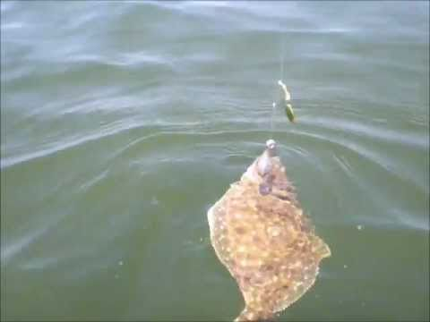 Kayak Flounder Fishing Point Lookout, MD, – July 23, 2011