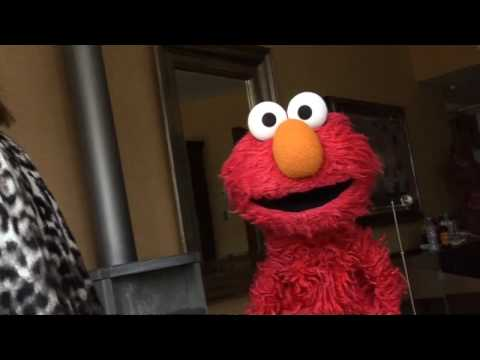 Elmo performs Beyonc�'s Single Ladies! Video