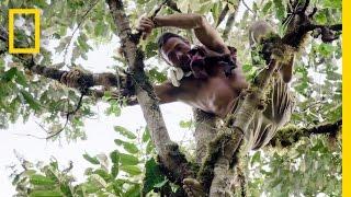 Durian Fruit: A Stinky Jungle Treasure | Primal Survivor