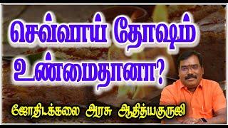 23 11 2015 Aditya Guruji Answers Puthuyugam TV – 0032