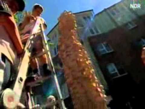 2006 Fernsehbeitrag: Kinderspektakel, NDR
