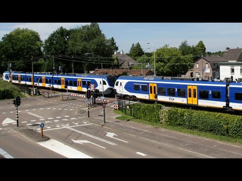 Live-Cam: Niederlande - Mierlo-Hout - RailCam Road and  ...