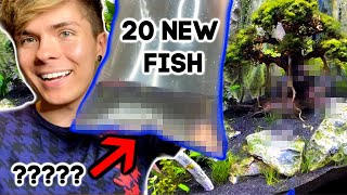 Buying 20 New Fish for my 75 Gallon Planted Aquarium! by Tyler Rugge