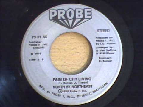 NORTH BY NORTHWEST - PAIN OF CITY LIVING